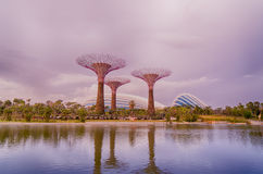 Gardens by the Bay, Singapore Stock Image