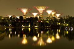 Gardens by the Bay Singapore. Singapore Gardens by the Bay at night Royalty Free Stock Photo