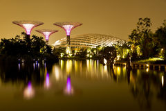 Gardens by the Bay Singapore. Singapore Gardens by the Bay at night stock photos