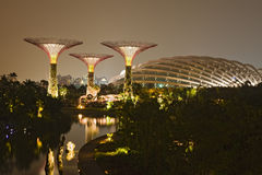 Gardens by the Bay, Singapore Stock Images