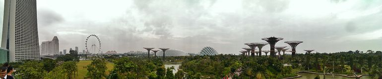 Gardens by the bay in Singapore. The gardens by the bay in Singapore stock photography