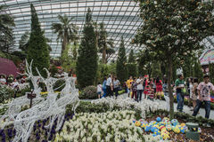 Gardens by the Bay Singapore Stock Photo
