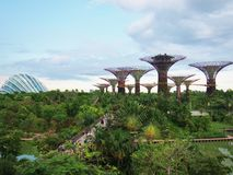 Gardens by the Bay in Singapore. Stock Photos