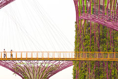 Gardens by the bay - Singapore Royalty Free Stock Image