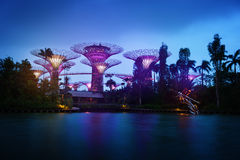 Gardens by the Bay in Singapore at Dusk Stock Photography