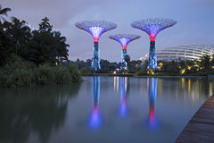 Gardens by the Bay & Singapore Flyer, Singapore Royalty Free Stock Image