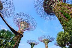 Gardens by the bay at Singapore Royalty Free Stock Image