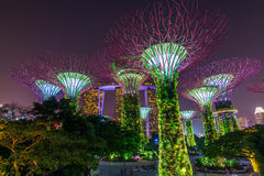 Gardens by the bay in Singapore Royalty Free Stock Photos