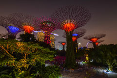 Gardens by the bay in Singapore Stock Photo