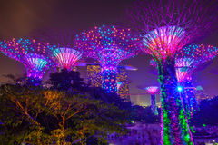 Gardens by the bay in Singapore Stock Images