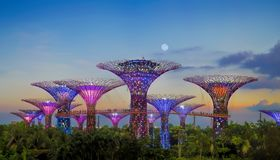 Gardens By The Bay Stock Photography