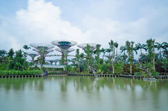 Gardens by the Bay, Singapore, long exposure Stock Photography