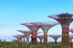 Gardens by the Bay, Singapore. Gardens by the Bay - Marina Bay Sands, Singapore. One of the most beautiful and high-technology gardens in the world Stock Image