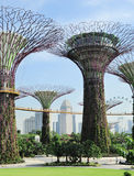 Gardens by the Bay Stock Image