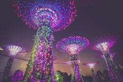 Gardens by the Bay, Singapore at night Royalty Free Stock Photography