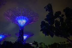 Gardens by the Bay in Singapore at Night Royalty Free Stock Images