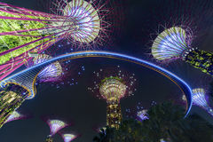 Gardens by the bay,Singapore Royalty Free Stock Image