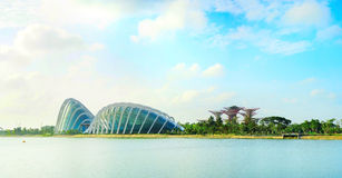 Gardens by the Bay in Singapore Royalty Free Stock Images