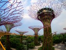 Gardens by the Bay, Singapore SEP 2017.  royalty free stock photo