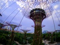Gardens by the Bay, Singapore SEP 2017.  royalty free stock images