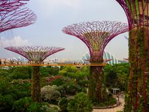 Gardens by the Bay, Singapore SEP 2017.  stock photos