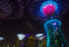 Gardens by the Bay in Singapore. SINGAPORE - FEB 22 : Supertrees in Gardens by the Bay in Singapore on Februery 22 2018. It is a music and light show when trees Royalty Free Stock Photo