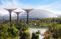 Gardens by the Bay. Singapore Stock Image