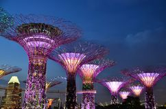 Gardens by the Bay, Singapore Travel Stock Image