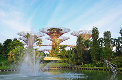 Gardens by the Bay on a Sunday Stock Images