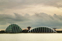 Gardens by the Bay Sunset Royalty Free Stock Photography