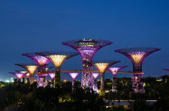 Gardens by the Bay: Royalty Free Stock Image