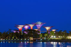 Gardens by the Bay. Super Trees at Gardens by the Bay, Singapore during Blue Hour Stock Photo