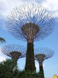 Gardens by the Bay SUPERTREE GROVE LAWN AND COLONNADE in Singapore stock images