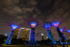 Gardens by the Bay - SuperTree Grove Stock Photos