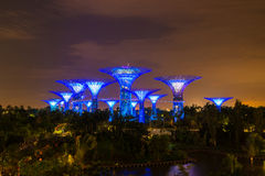 Gardens by the Bay - SuperTree Grove in Singapore Stock Photography