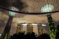 Gardens by the Bay - SuperTree Grove in Singapore Royalty Free Stock Photos