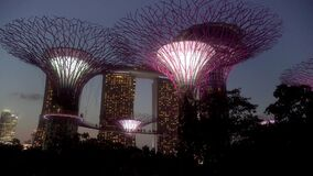 Gardens by the Bay Supertree Tree Sculptures and the Marina Bay Sands Hotel Singapore Sunset