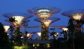 Gardens by the Bay - SuperTrees Royalty Free Stock Image