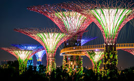 Gardens by the Bay, Supertrees. Singapore City, Singapore - November 5, 2014: Gardens by the Bay 'Supertrees' lit up at night in Singapore City Stock Photo