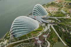 Gardens by the Bay view from marina bay hote Stock Image