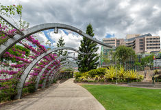 Gardens in Brisbane Stock Photography