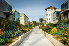 Gardens and buildings along a walkway in Venice Beach  Stock Image