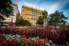 Gardens and buildings at Farragut Square, in Washington, DC. Stock Photography
