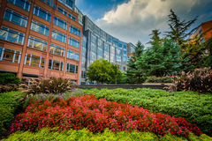 Gardens and buildings at Johnson & Wales University, in Charlott Stock Photography