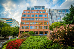 Gardens and buildings at Johnson & Wales University, in Charlott Royalty Free Stock Images