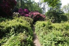 Gardens, in Deer park, Dublin, Ireland Stock Photo