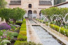 Gardens and fountain of generalife in granada Stock Images