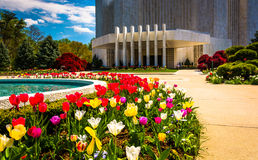 Gardens in front of the Washington DC Mormon Temple in Kensingto Royalty Free Stock Photo