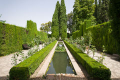 Gardens of the Generalife. 'Generalife' is translated as 'garden of the architect Stock Photos