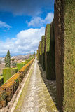 Gardens in Granada in winter Stock Image